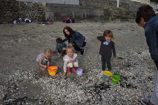 Les élèves de maternelle travaillent sur la mer dsc0316