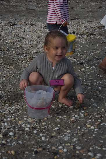 Les élèves de maternelle travaillent sur la mer dsc0318