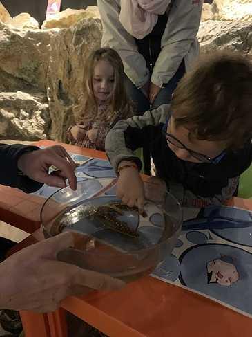 L''aquarium de Saint-Malo pour la maternelle img4401