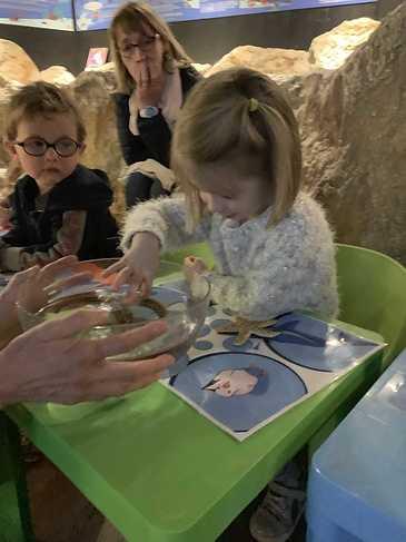 L''aquarium de Saint-Malo pour la maternelle img4402