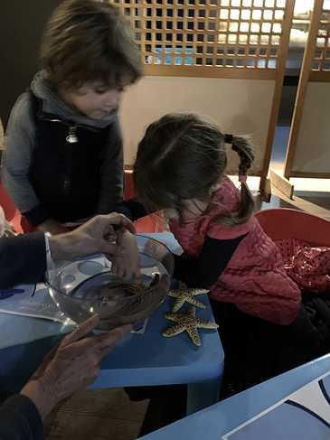 L''aquarium de Saint-Malo pour la maternelle img4405