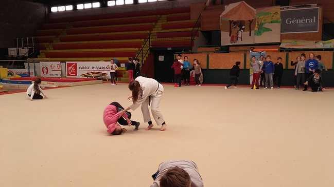 Les élèves de l'école St Michel découvrent le judo ! 20170327112056